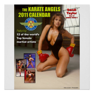 The_2011_Karate_Angels_Calendar Posters