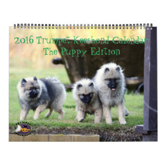 The 2016 Trumpet Keeshond Calendar : Puppy Edition