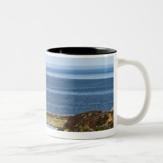 The 260 foot (80-metre) long wreck of the MV Two-Tone Coffee Mug