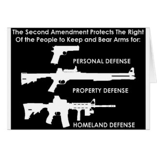 The 2nd Amendment Protects... Greeting Card