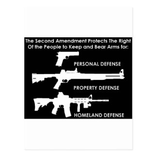 The 2nd Amendment Protects... Postcard