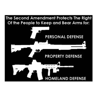 The 2nd Amendment Protects... Postcard