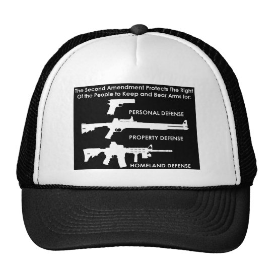 The 2nd Amendment Protects... Trucker Hat