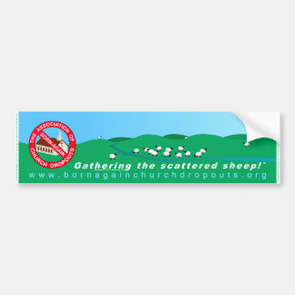 The ABCD Banner bumper sticker
