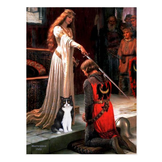 The Accolade - Black and White Cat Postcard