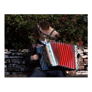 The accordian player postcard
