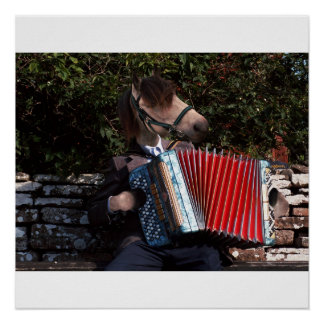 The accordian player poster