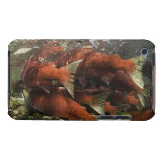 The Adams River sockeye run is one of the iPod Touch Case