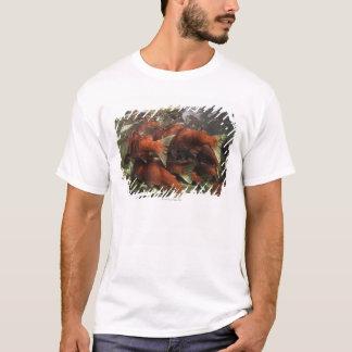 The Adams River sockeye run is one of the T-Shirt
