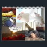 "The Adventures of Peep Calendar<br><div class=""desc"">The Adventures of Peep Calendar.  Featuring her best Adventures!   Thank You!   Love,  Peep &amp; Charlotte</div>"
