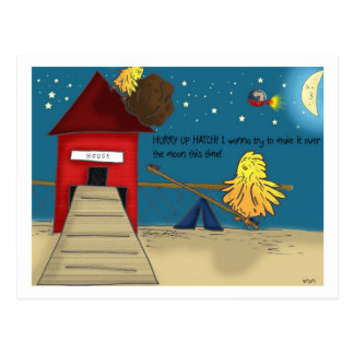 The Adventures of Shellie and Hatch -11 Postcard
