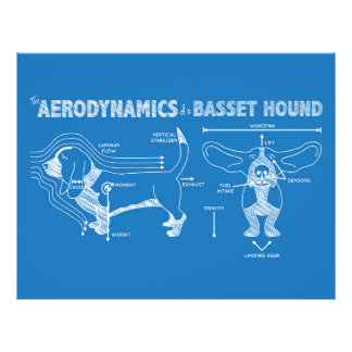 The Aerodynamics of a Basset Hound Personalized Letterhead