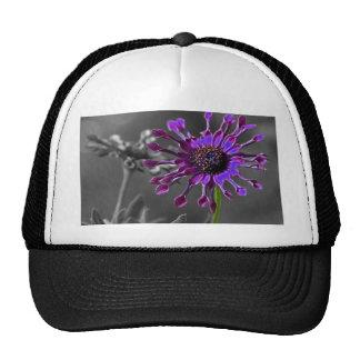 The African Daisy Trucker Hat