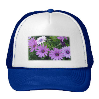 The African Daisy Trucker Hat