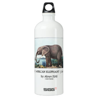 The African Elephant (1886) by Aloys Zötl Aluminum Water Bottle
