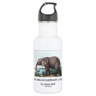 The African Elephant (1886) by Aloys Zötl Stainless Steel Water Bottle
