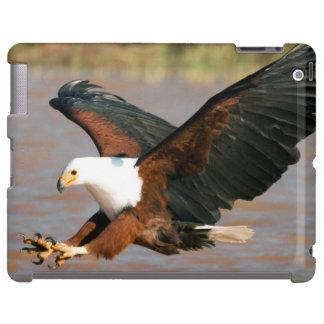 The African Fish Eagle (Haliaeetus Vocifer)