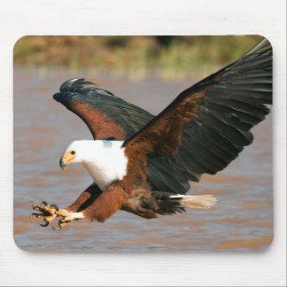 The African Fish Eagle (Haliaeetus Vocifer) Mouse Pad