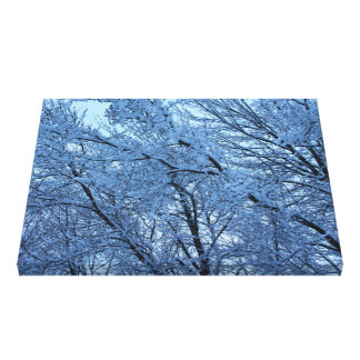 The Aftermath of A Winter Storm Canvas Print