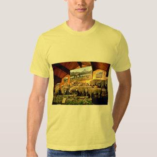 The Agrodome, Rotorua Tee Shirt