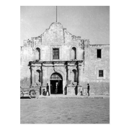 The Alamo in San Antonio, TX  1 Postcard