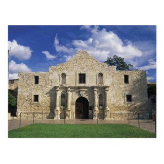 The Alamo Postcard