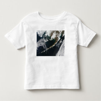 The Alaskan Peninsula and Aleutian Islands Tee Shirts
