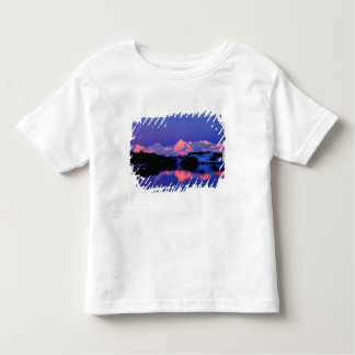 The Alaskan Range is adjacent to Mt. Denali, Toddler T-shirt