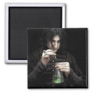 The Alchemist - Magnet