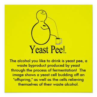 The Alcohol (Beer) You Drink Is Yeast Pee! Poster
