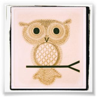 The All-Seeing Owl II Art Photo