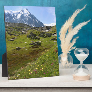 The Alps mountain range - Stunning! Plaques