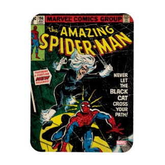 The Amazing Spider-Man Comic #194 Magnet