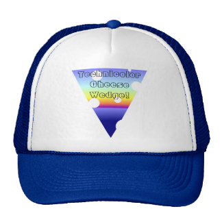 The Amazing Technicolor Cheese Wedge! Hat