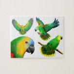 The Amazon Parrot Puzzle