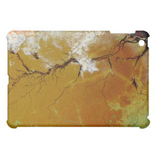 The Amazon Rainforest iPad Mini Cover