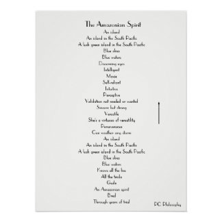The Amazonian Spirit poster