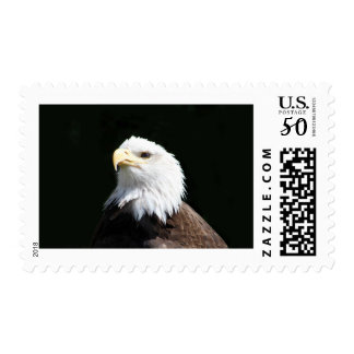 The American Bald Eagle Postage