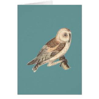 The American Barn Owl(Strix pratincola)1 Greeting Card