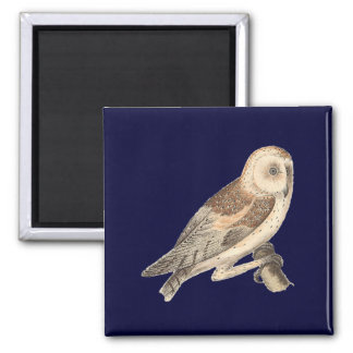 The American Barn Owl(Strix pratincola)1 Magnet