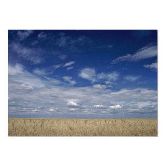 """The American Prairies 5"""" X 7"""" Invitation Card"""