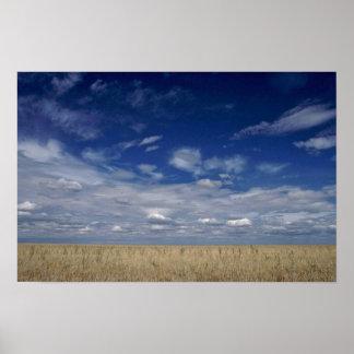 The American Prairies Poster