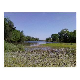 The American River in Sacramento,CA Postcard