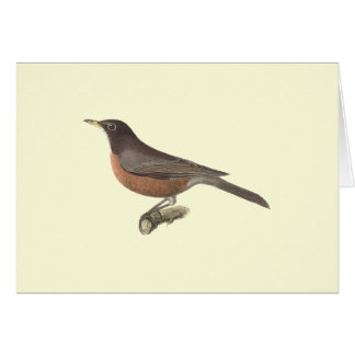 The American Robin(Merula migratoria) Greeting Card