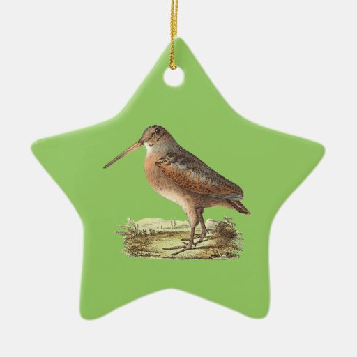 The American Woodcock	(Rusticola minor) Christmas Tree Ornament