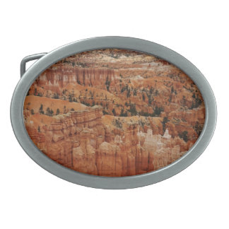The Amphitheater from the rim at Bryce point at Br Belt Buckle