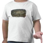 The Amphitheatre T-shirts