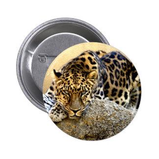 The Amur Leopard Pinback Buttons