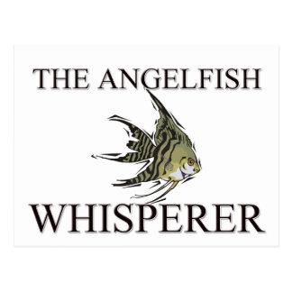The Angelfish Whisperer Postcard