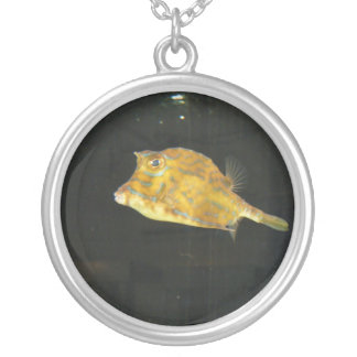 The Angry Fish Round Pendant Necklace